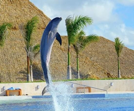 Imagem ilustrativa do destino Punta Cana